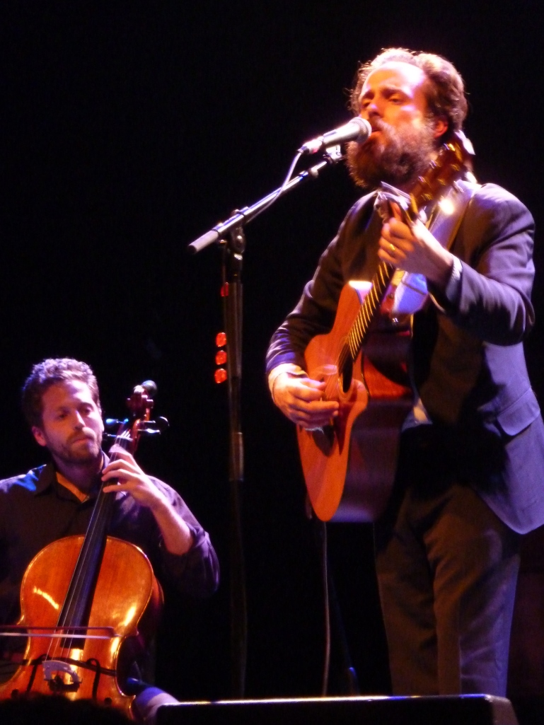 Iron & Wine, la Cigale 2013, cello